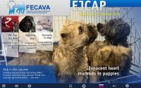 EJCAP Summer 2016: Innocent heart murmurs in puppies